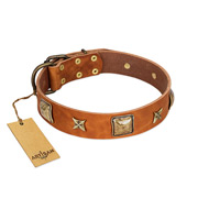 """Celtic Tunes"" FDT Artisan Tan Leather Doberman Collar Adorned with Stars and Squares"