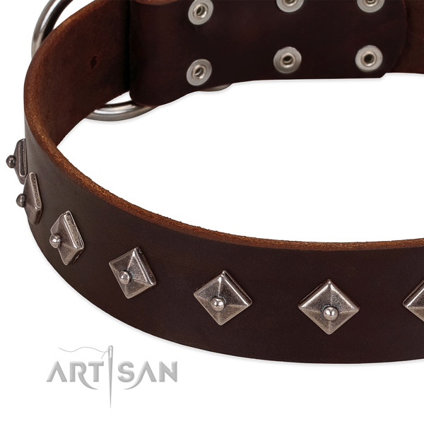 Significant collar of natural leather for your lovely four-legged friend