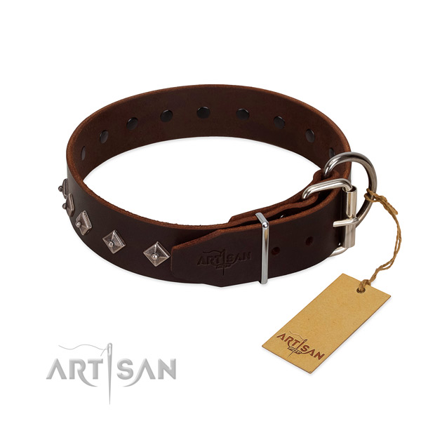 Stunning embellishments on leather collar for comfortable wearing your four-legged friend
