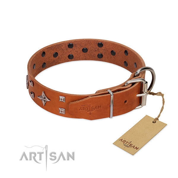 Top notch full grain genuine leather collar for your canine stylish walks
