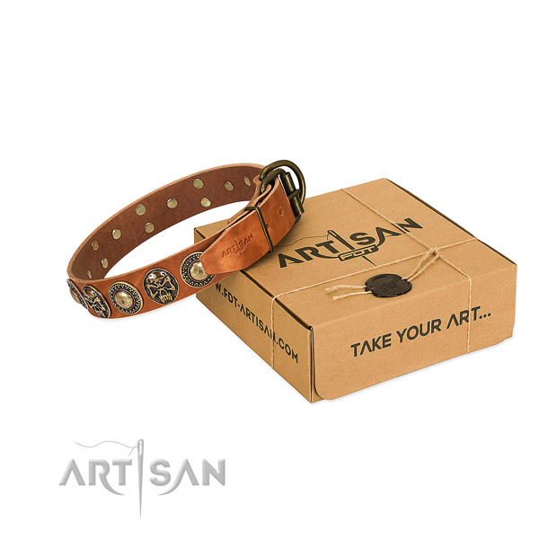 Rust resistant adornments on dog collar for comfortable wearing