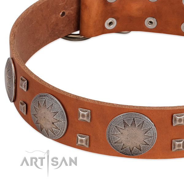 Walking top rate full grain genuine leather dog collar