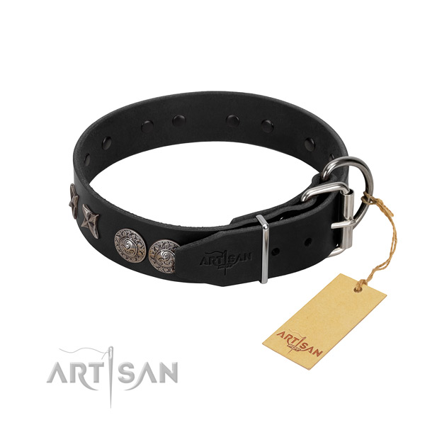 Everyday walking dog collar of leather with extraordinary decorations