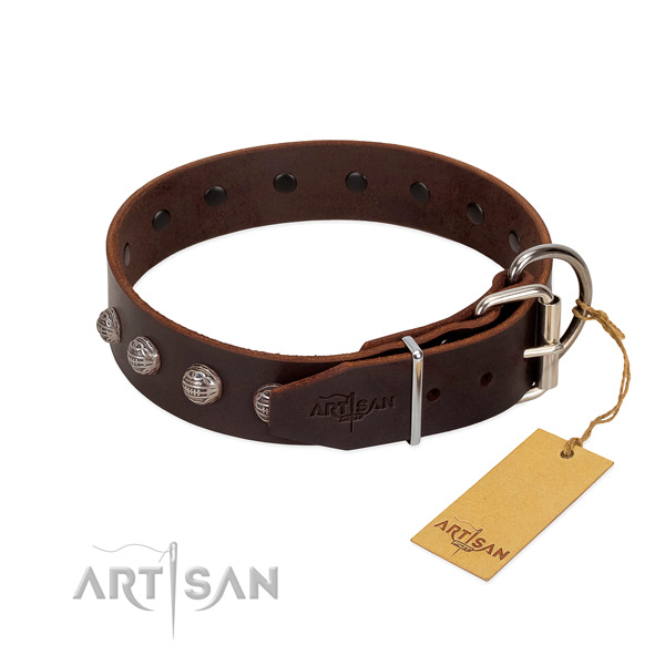 Convenient dog collar handmade for your impressive dog