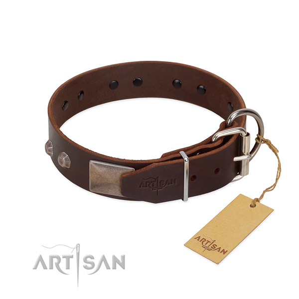 Significant full grain leather dog collar for everyday walking your doggie