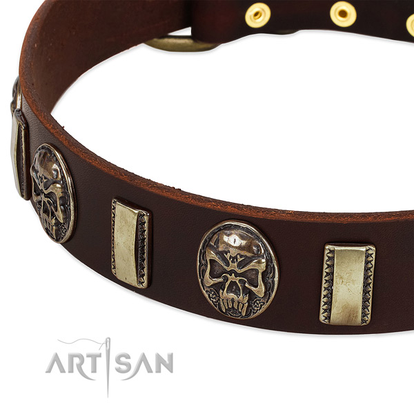 Rust-proof buckle on natural genuine leather dog collar for your canine