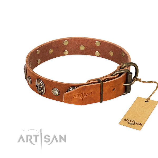 Strong buckle on full grain genuine leather collar for everyday walking your canine