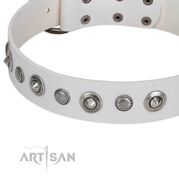 Full grain genuine leather collar with durable fittings for your impressive canine
