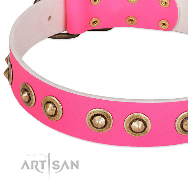 Corrosion proof adornments on natural genuine leather dog collar for your dog