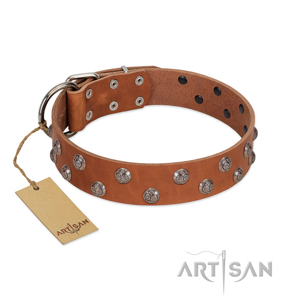 Durable genuine leather dog collar with embellishments