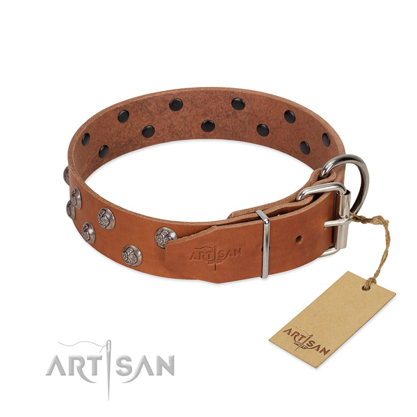 Rust resistant fittings on decorated full grain leather dog collar