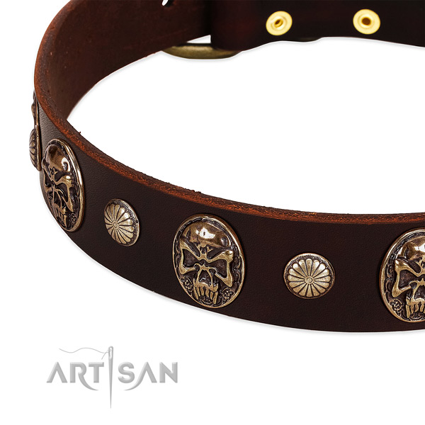 Leather dog collar with studs for daily walking