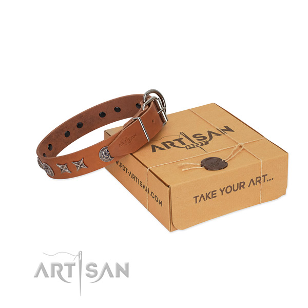 Everyday use dog collar of leather with designer studs