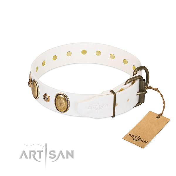Fancy walking full grain natural leather dog collar