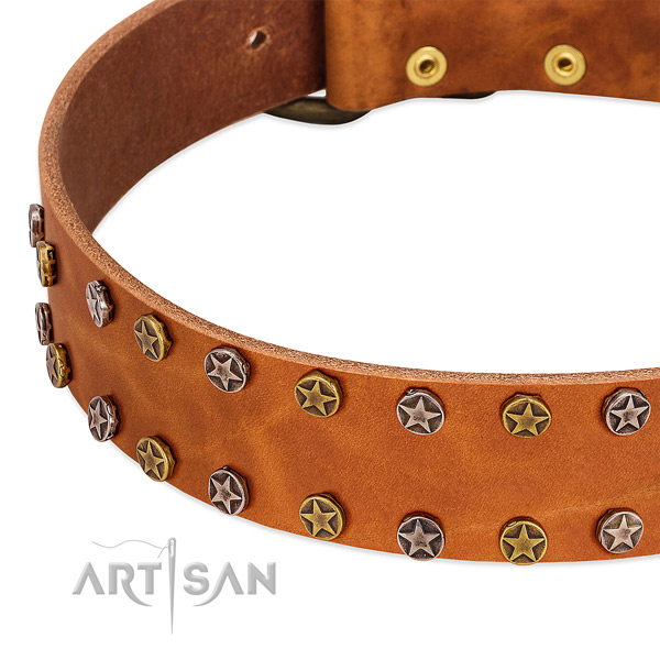 Comfy wearing full grain genuine leather dog collar with amazing adornments