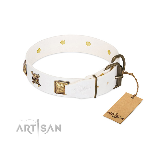 Stunning leather dog collar with durable embellishments