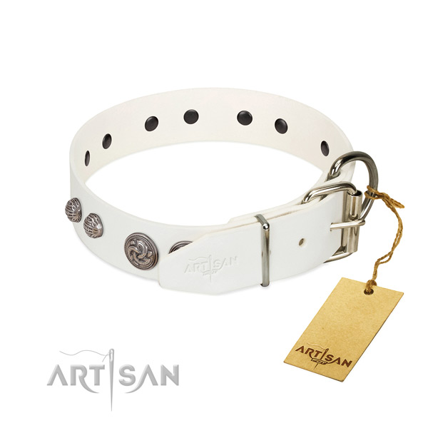 Reliable traditional buckle on genuine leather dog collar for your four-legged friend