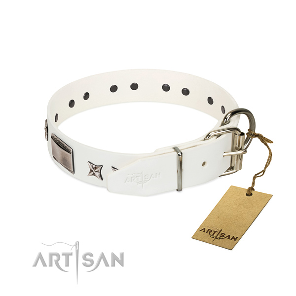 Comfortable collar of leather for your handsome pet