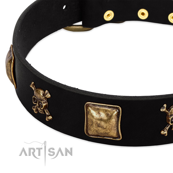 Top notch full grain leather collar with decorations for your doggie