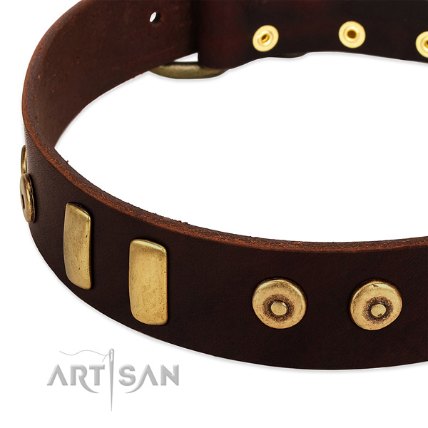 Soft to touch full grain genuine leather collar with remarkable adornments for your dog
