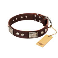 """Pirate Skull"" FDT Artisan Brown Leather Doberman Collar with Old Silver Look Plates and Skulls"