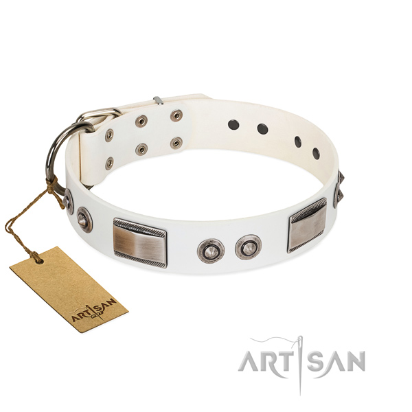 Handcrafted dog collar of full grain natural leather with adornments