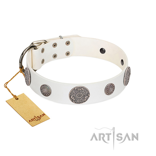 Fashionable full grain natural leather collar for your beautiful four-legged friend