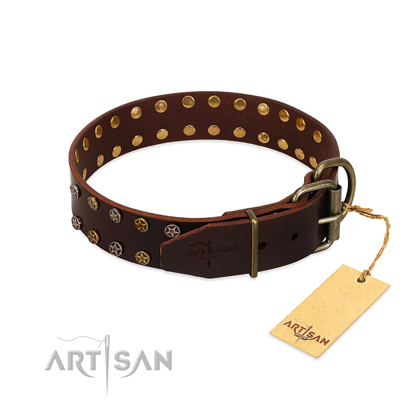 Handy use leather dog collar with extraordinary embellishments