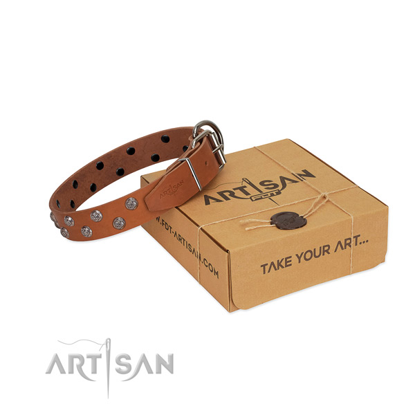 Rust resistant buckle on studded leather dog collar