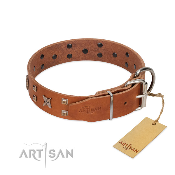 Reliable natural leather dog collar for your stylish dog