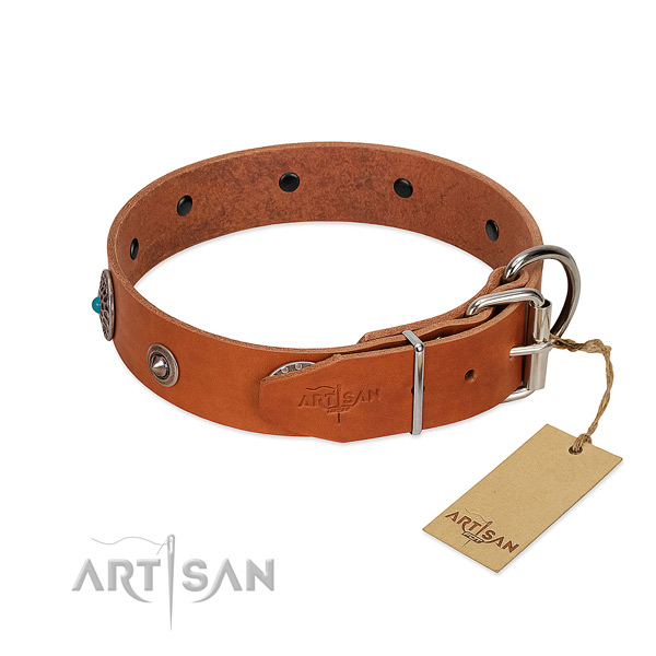Full grain natural leather dog collar with stylish adornments