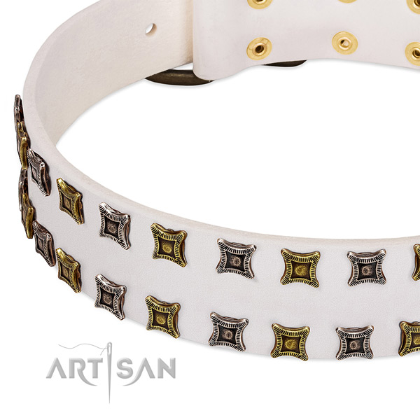 Gentle to touch leather dog collar for your stylish doggie
