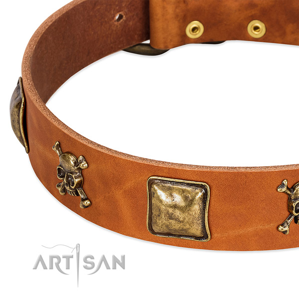 Remarkable adornments on full grain leather collar for your dog