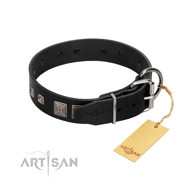 Easy wearing full grain natural leather dog collar with unique adornments