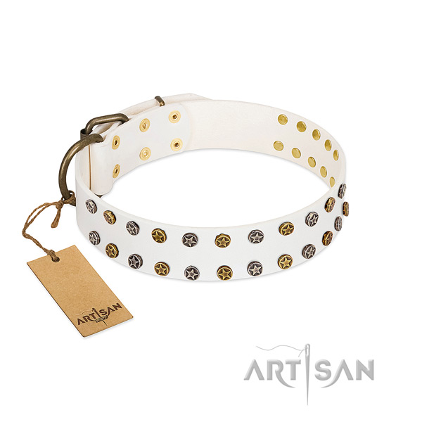 Stylish design natural leather dog collar with rust-proof embellishments