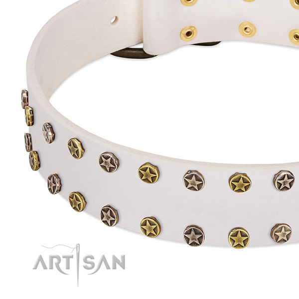 Amazing embellishments on leather collar for your dog