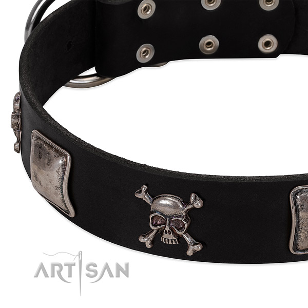 Durable hardware on genuine leather dog collar