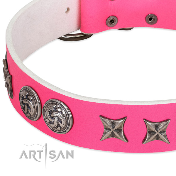 Natural leather collar with significant adornments for your four-legged friend