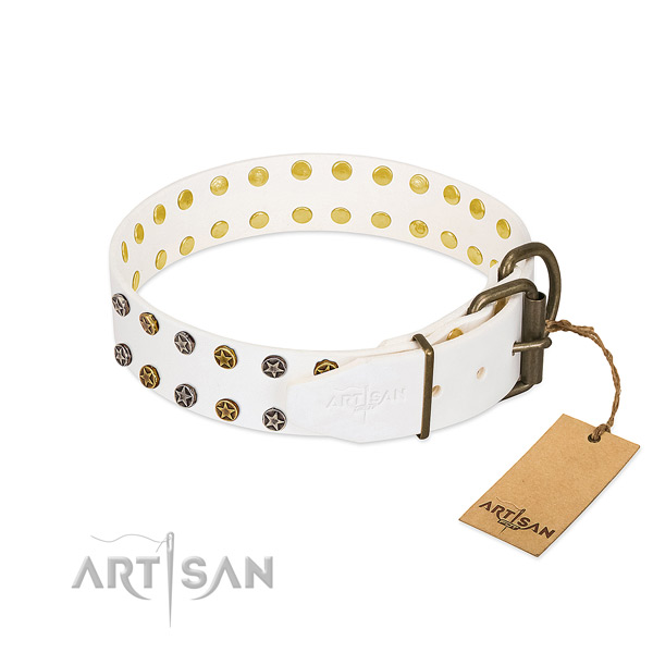 Full grain genuine leather collar with unique embellishments for your canine