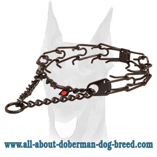 Corrosion-proof black stainless steel prong collar for ill behaved canines