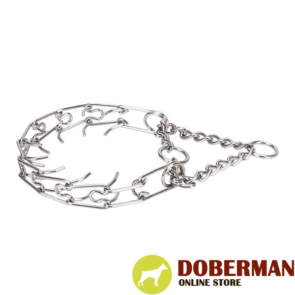 Stainless steel pinch collar with durable O-ring for attaching a leash