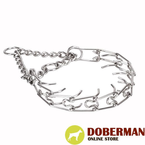 Stainless steel prong collar for ill behaved canines