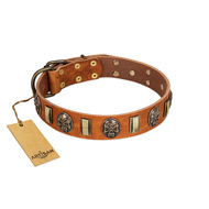 """Strike of Rock"" FDT Artisan Tan Leather Doberman Collar with Plates and Medallions with Skulls"