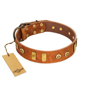 """Egyptian Script"" FDT Artisan Tan Leather Doberman Collar with Plates and Small Studs"