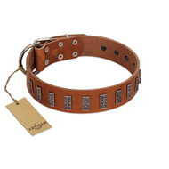 """Silver Century"" Fashionable FDT Artisan Tan Leather Doberman Collar with Silver-Like Plates"