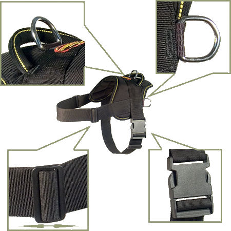 Hug a dog harness for Doberman