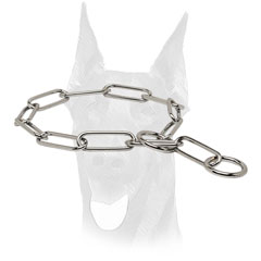 Choke chain collar for Doberman training