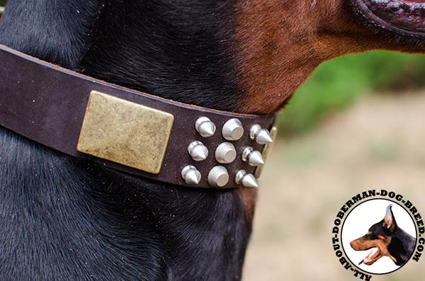 Super strong leather Doberman collar with brass buckle and D-ring