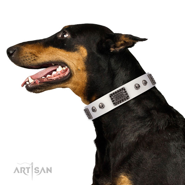 Perfect fit leather collar for your impressive pet