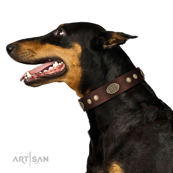 Corrosion proof D-ring on genuine leather dog collar for stylish walking